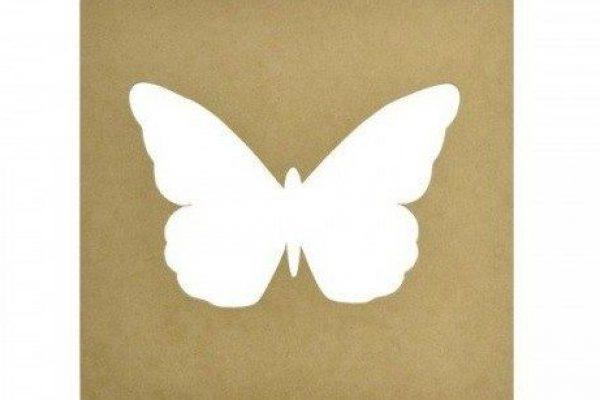 Cadar Butterfly?