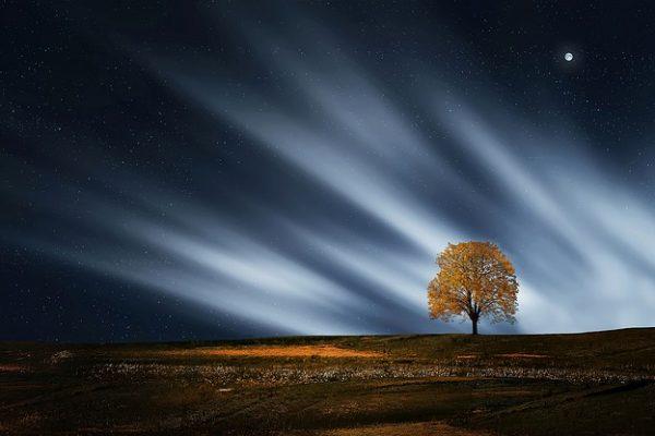 Kesungguhan Wanita Salaf dalam Qiyamullail, Bagaimana dengan Kita? (Bag. 1)